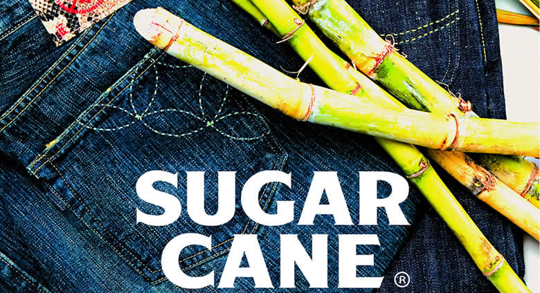 sugar-cane-index.jpg