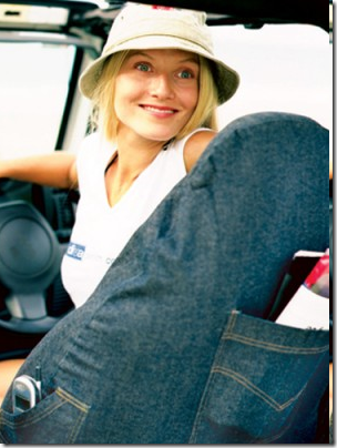 denim car seat cover