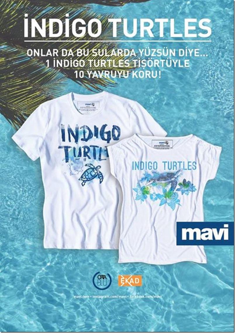 Indigo Turtles- Helping Baby Sea Turtles with their First Steps denimsandjeans.com