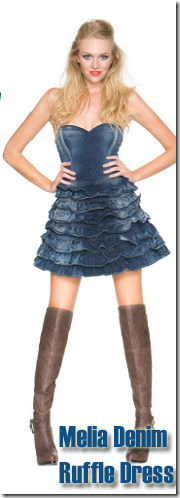 melia ruffle denim dress guess