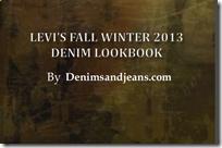 Levis Fall Winter 2013 /14 Lookbook