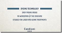 Dyeing technology denim