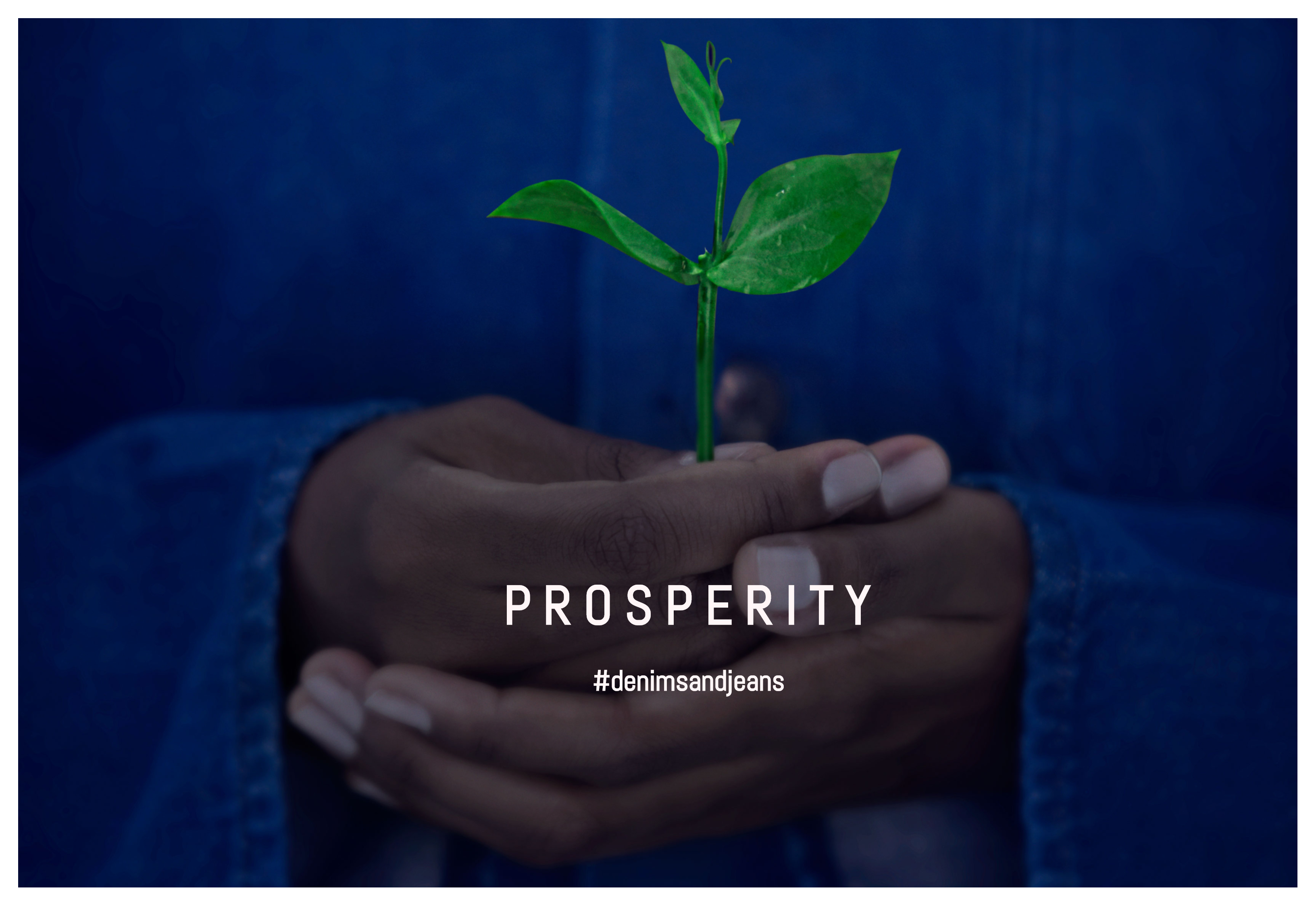 Prosperity Textiles –  Sustainability Efforts By The Exhibitors Of Denimsandjeans | Part IV