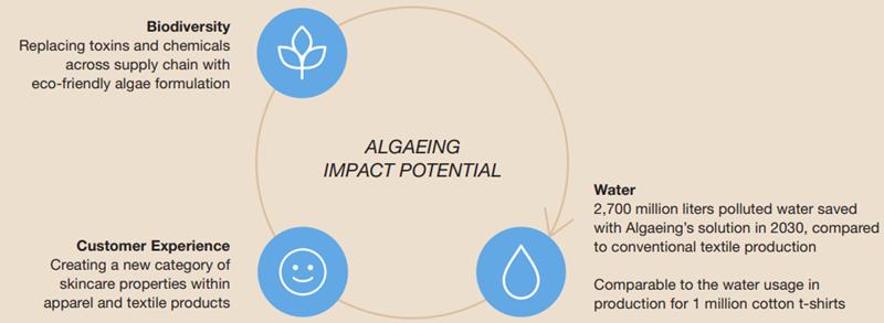 Algaeing Impact